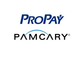 Case PAMCARY e ProPay: parceria a favor da tecnologia e inovação